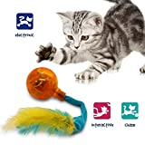 Pet Craft Supply Crazy Cat Electronic Wiggling Cat Toy with Lights and Feathers - Batterie...