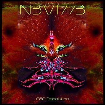 Ego Dissolution