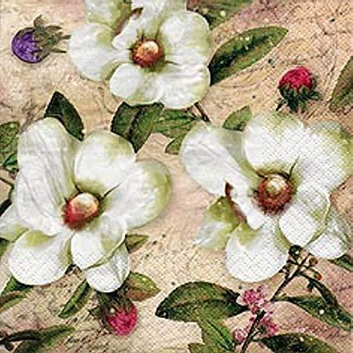 Linoows G5534 : 20 Serviettes Trois Blanc Magnolia et Blütenknospen 33x33 Cm