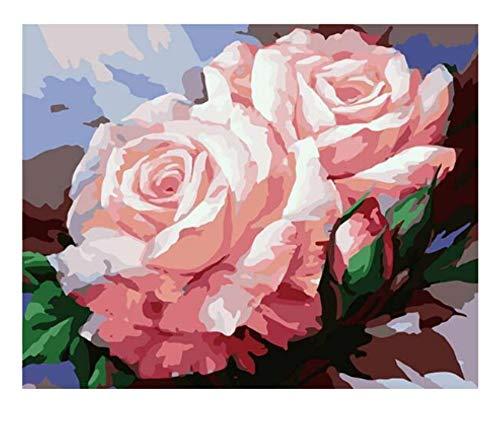 Pintura de bricolaje por números flores pintura al óleo pintada a mano pintura acrílica decoración del hogar regalo único diversión en el hogar A2 60x80cm