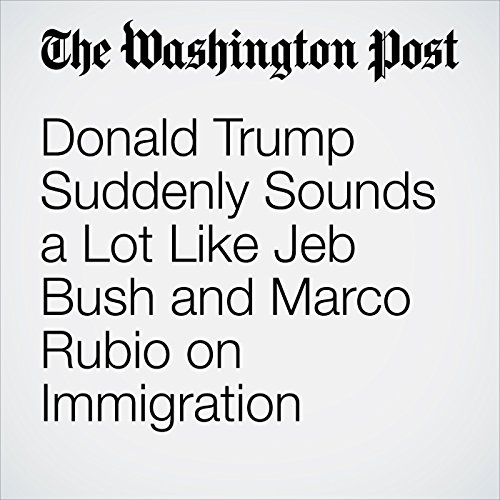 Donald Trump Suddenly Sounds a Lot Like Jeb Bush and Marco Rubio on Immigration cover art