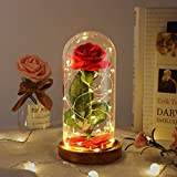Beauty and The Beast Rose Set-The Best Holiday Surprise Gift for Mothers, Beautifully Decorated With Red Silk Roses, LED Lights, Dome Glass and Wooden Base