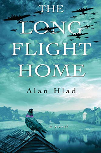 Image of The Long Flight Home
