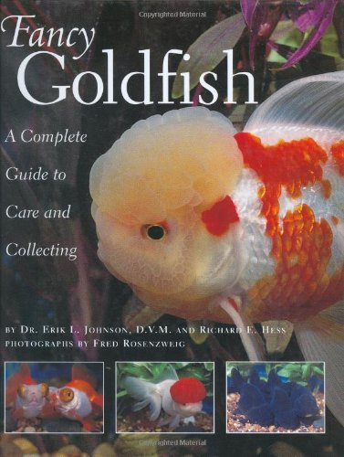 Fancy Goldfish: A Complete Guide