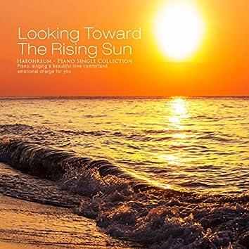 Looking at the rising sun