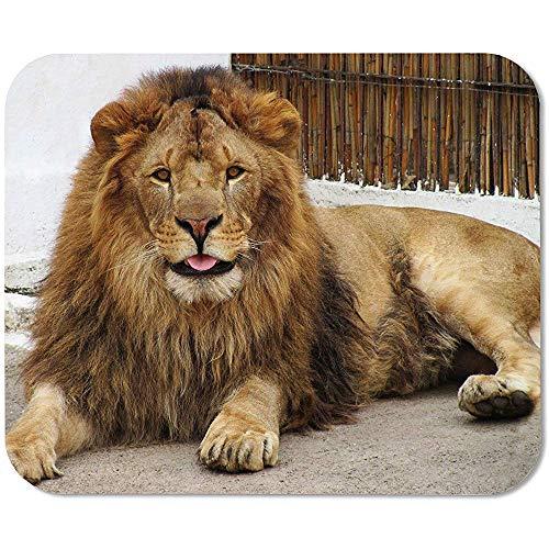 Divertido León Personalizado rectángulo Antideslizante de Goma Mouse