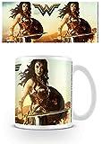 DC Comics MG24522 Wonder Woman (Fierce) Mug, Papier, Multicolore, 11oz/315ml