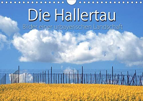 Hallertau (Wandkalender 2021 DIN A4 quer)