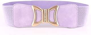 WZXSMDY Autumn and Winter high-Quality Woven Girdle Versatile Coat Waist Elastic Wide Belt (Color : Purple, Size : 66 * 6cm)