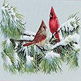 Dimensions 'Winter Cardinals' Counted Cross Stitch Kit, 16 Count Dove Grey Aida, 15' x 9'