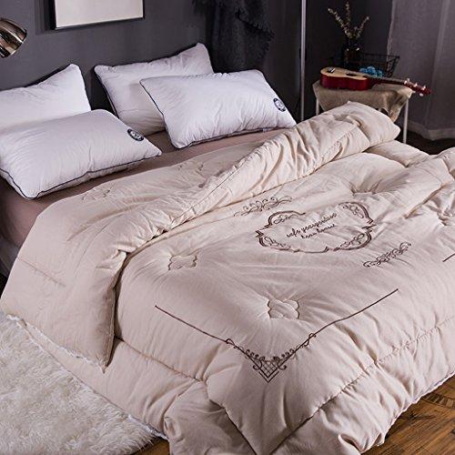 MMM Coton hiver printemps et automne Quilt épais Double brodé Quilt Core Sanding literie ( Couleur : Or , taille : 220*240cm(4.5kg) )