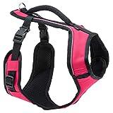 PetSafe EasySport Dog Harness, Adjustable Padded Dog Harness with...