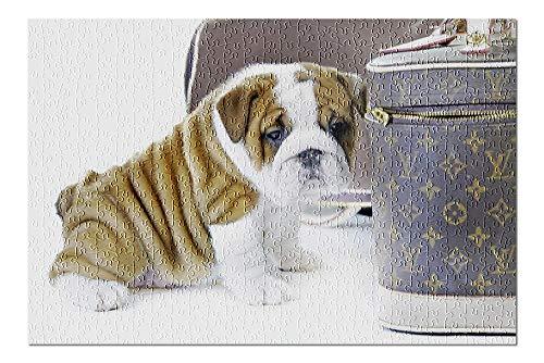 Lantern Press Cute English Bulldog Dog Puppy 9024885 (500 Piece Premium Jigsaw Puzzle for Adults and Family, 13x19)