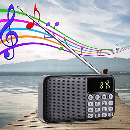 ZUZEN Reproductor de radio portátil receptor digital DAB DAB+radio FM bluetooth estéreo altavoz exterior receptor FM reproductor de música con correa