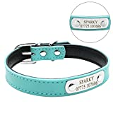 Didog Adjustable Leather Padded Custom Dog Collar with Engraved Nameplate,Fit Cats and Small Medium Dogs,Blue,S Size