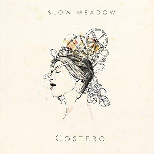 Slow Meadow