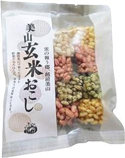 エッチ・ジェイ・ケイ「玄米おこし×4袋」
