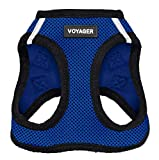Voyager Step-in Air Dog Harness - All Weather Mesh Step in Vest Harness for Small and Medium Dogs by Best Pet Supplies - Royal Blue Base, S (Chest: 14.5 - 16')