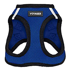 Voyager Step-in Air Dog Harness – All Weather Mesh, Step in Vest Harness for Small and Medium Dogs by Best Pet Supplies – Royal Blue Base, XXS (Chest: 10.5-13″ Fit Cats) (207T-RBB-XXS)