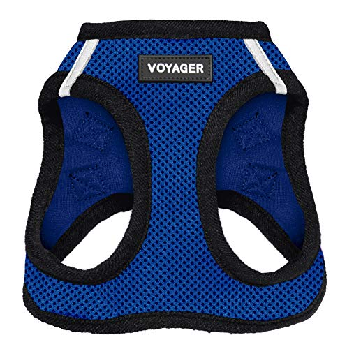 Best Pet Supplies Voyager Step-in Air Dog Harness - All Weather Mesh, Step in Vest Harness for Small and Medium Dogs Royal Blue Base, XL (Chest: 21-23