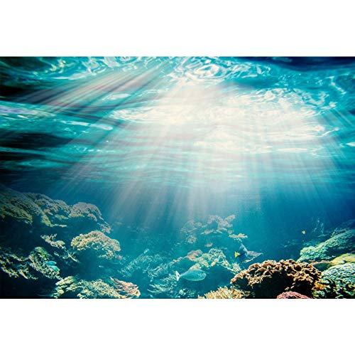 YongFoto 1,5x1m Vinilo Fondo de fotografía Acuario Fondo de luz Solar bajo el Agua Los Peces Corales Telón de Fondo Fotografía cumpleaños Estudio de Foto Fondos fotográficos