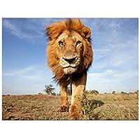 DIYペイント 数字 キャンバス油絵 ライオン動物 DIY絵 デジタル油絵 -40x50cm (フレームレス)