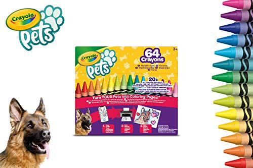 Crayola-64 Wachsmalstifte von hoher Qualität, einzeln verdrahtet, Packung enthält einen Anspitzer, 52-1164
