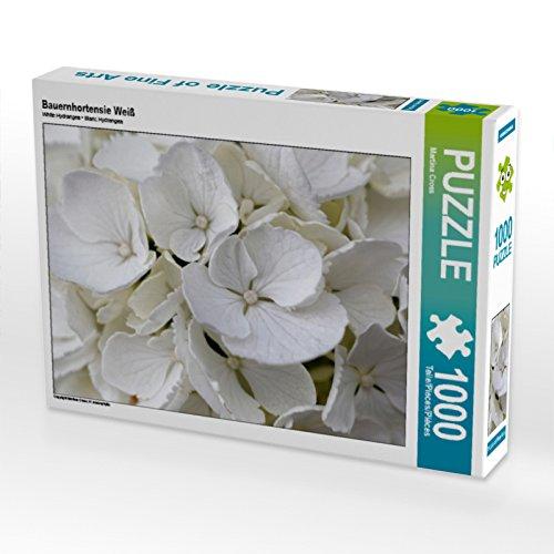 CALVENDO Puzzle Bauernhortensie Weiß...