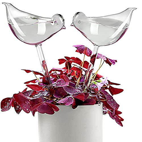 KiKiHeim Plant Waterer Self Watering Bulbs, Hand Blown Clear Glass Plant Watering Globes for Indoor,...
