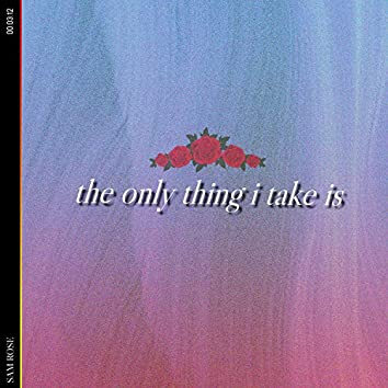 the only thing i take is