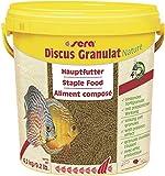 Sera 1 Piece Discus granules Fish Food, 9.2 lb/2...