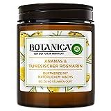 Botanica by Air Wick Duftkerze, Frische Ananas & Tunesischer Rosmarin, 6 Stück (6 x 205g)
