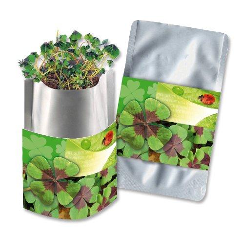Pflanztüte Plant Bag Glücksklee