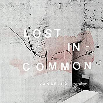 Lost in Common