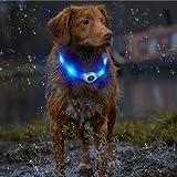 LED Hunde Halsband, LaRooTM Blinkende Leuchtendes LED Sicherheit Halsbänder - 9
