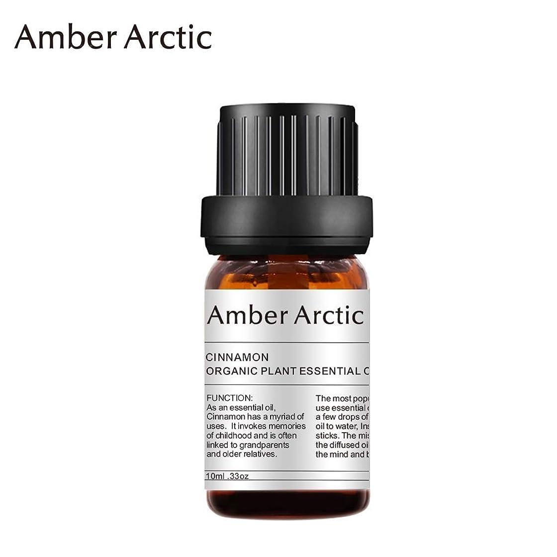 クライマックス隔離軽量Amber Arctic シナモン エッセンシャル オイル、100% 天然 アロマ テラピー シナモン オイル スプレッド 用 (10ML) シナモン