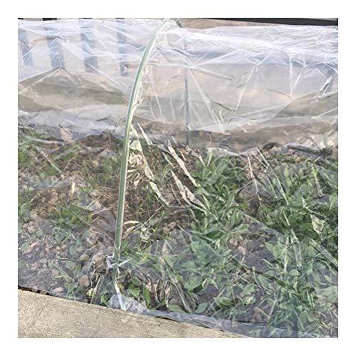 Invernaderos Jardin Patio Guardería Cultivo Plantas Mantener CalienteTransparente Plegable Portátil Prevención Aves Impermeable No Se Requiere Ensamblaje, 4 Tamaños BAI Yin
