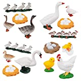 TOYMANY 16PCS Farm Animals Figurines Life Cycle of Chicken Hen Duck Goose White Swan, Plastic Safariology Growth Cycle Eggs Figures Toy Kit School Project Cake Topper for Kids Toddlers