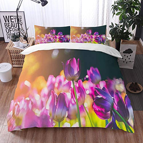 Qinniii Duvet Cover Bedding Sets,Group of Colorful Tulip Flowers,3-Piece Comforter Cover Set 220 x 240 cm +2 Pillowcases 50 * 80cm
