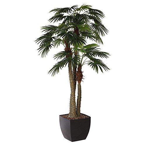 Kunstpflanze Fächerpalme mit 3 Stämmen und 45 Blättern, ca. 300 cm