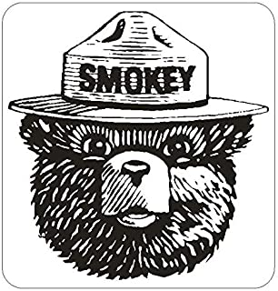 Forest Service Smokey The Bear Wall Art | 5 - Sizes Sticker Patch Poster Banner | Forest Service Smokey The Bear car Decal