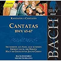 Complete Bach:Cantatas Bwv65
