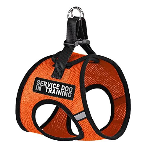 Dogline York Step-in Air Mesh Harness