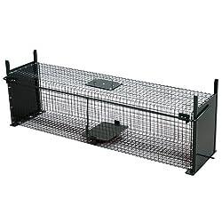 se d barrasser d 39 une fouine oui mais comment. Black Bedroom Furniture Sets. Home Design Ideas