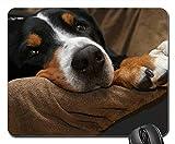 Gaming-Mauspads, Mauspad, Schweizer Sennenhund Dog Mountain Dog Paws Hunger