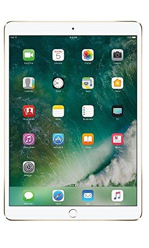 Apple iPad 9.7 (2018) 128GB Wi-Fi - Gold (Renewed)