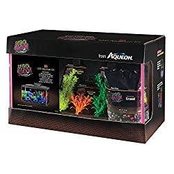 Best Fish Tank Starter Kits