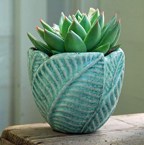 Bluebell Yard Petit pot de fleurs en céramique de style rétro avec feuille verte.