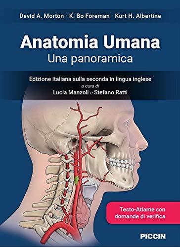 Anatomia umana. Una panoramica
