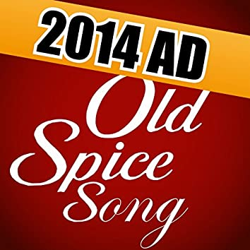 New Old Spice TV Ad 2014 (Mom Song 60 Oh I Didn't See It Coming Commercial Music)